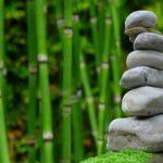 Piękny oraz uporządkowany zieleniec to zasługa wielu godzin spędzonych  w jego zaciszu w trakcie jego pielegnacji.